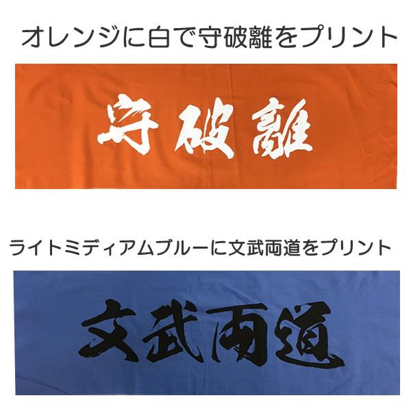 剣道 面タオル カラー 手ぬぐい 面手ぬぐい (100枚から)  面手拭い (選べる 10種類) 防具 手拭い てぬぐい 100cm 部活 クラブ 道場 オリジナル 名入れ も可能