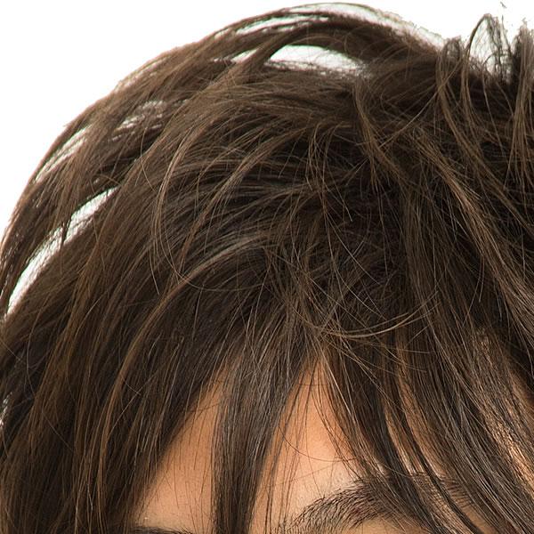 メンズ ウィッグ ショート メンズ ミディアムウルフ ダークブラウン 【耐熱】 メンズウィッグ フルウィッグ かつら 男性 遊び WIGGY RICHメンズ