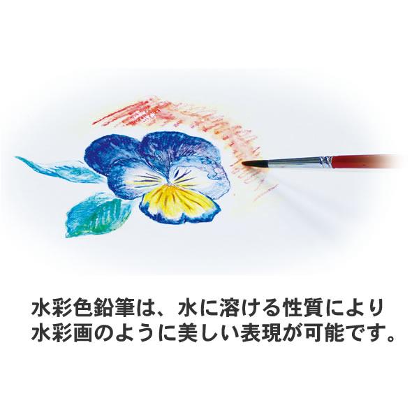 水彩色鉛筆 18色 【文房具_筆記具_色鉛筆_13色〜24色セット】