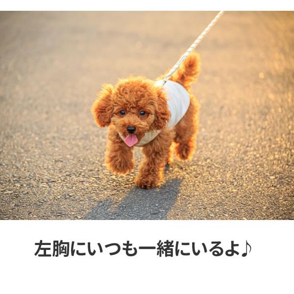 トイプー tシャツ ワンポイント トイプードルグッズ おもしろ グッズ 雑貨 犬 オリジナル 犬柄 メンズ レディース プリント 服 可愛い おしゃれ 面白い
