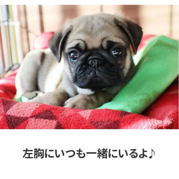パグ グッズ tシャツ パグ犬 ワンポイント おもしろ 雑貨 犬 オリジナル 犬柄 メンズ レディース プリント 服 可愛い おしゃれ 面白い