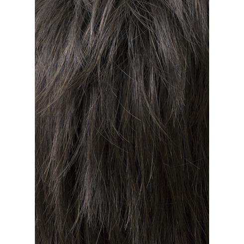 メンズ ウィッグ 黒 スタンダードショート スタンダードブラック 【耐熱】 メンズウィッグ フルウィッグ かつら 男性  黒髪 仕事 ビジネス 面接 ラパン