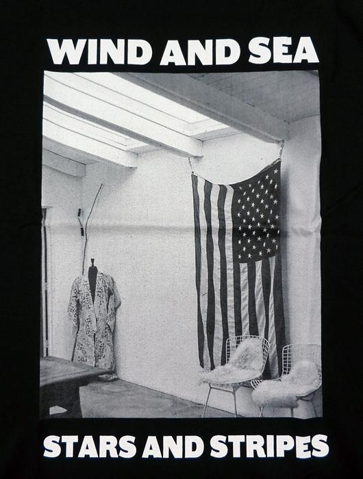 WIND AND SEA ウィンダンシー WDS (STARS AND STRIPES) PHOTO T-SHIRT Tシャツ ブラック WDS-20A-CS-05