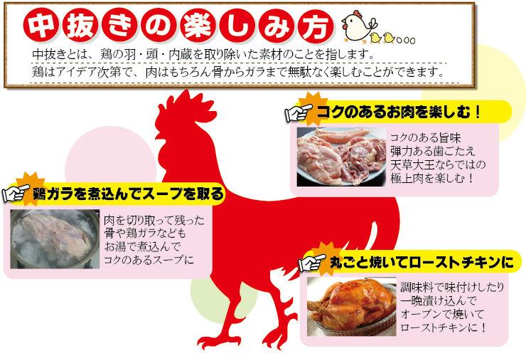【熊本地鶏】身がギッシリ!天草大王 中抜き 丸1羽セット