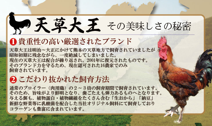 【熊本地鶏】天草大王炭火焼セット