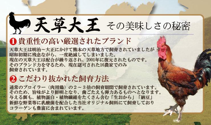 【熊本地鶏】天草大王お試し半身セット