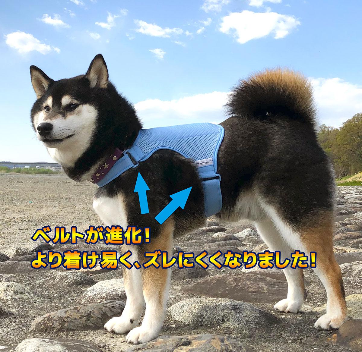 犬用保冷ベスト「ホレイベスト-ワン-」(愛犬用熱中症対策グッズ)
