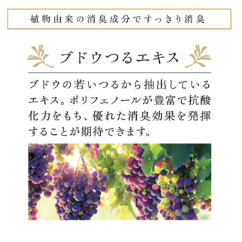 ポーラアロマエッセゴールドリフレッシャー10L(消臭剤)【入数1個】