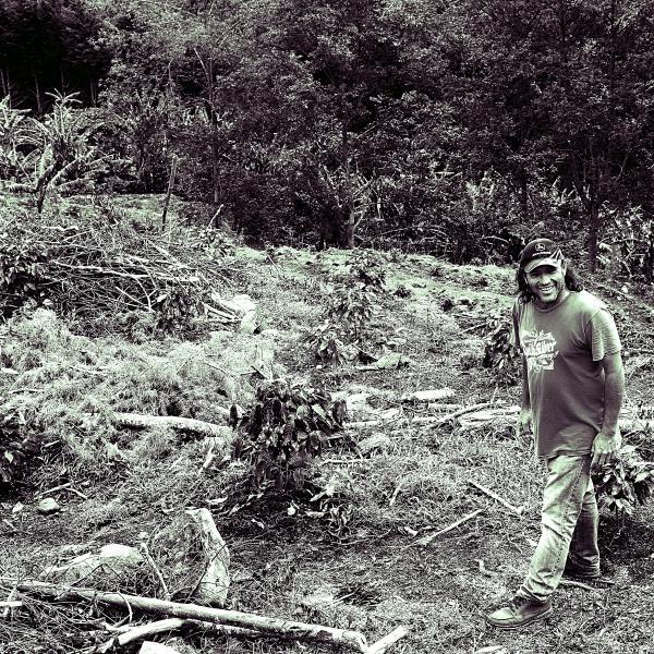 COSTA RICA-SantaTeresa2000/コスタリカ サンタテレサ2000