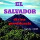 EL SALVADOR- Divina Providencia/エルサルバドル ディビーナ プロビデンシア(SL28種)
