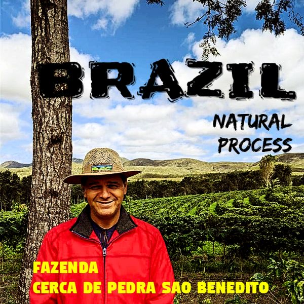 BRAZIL - Cerca de Pedra Sao Benedito /セルカ・デ・ペドラ・サン・ベネディート(ナチュラル)