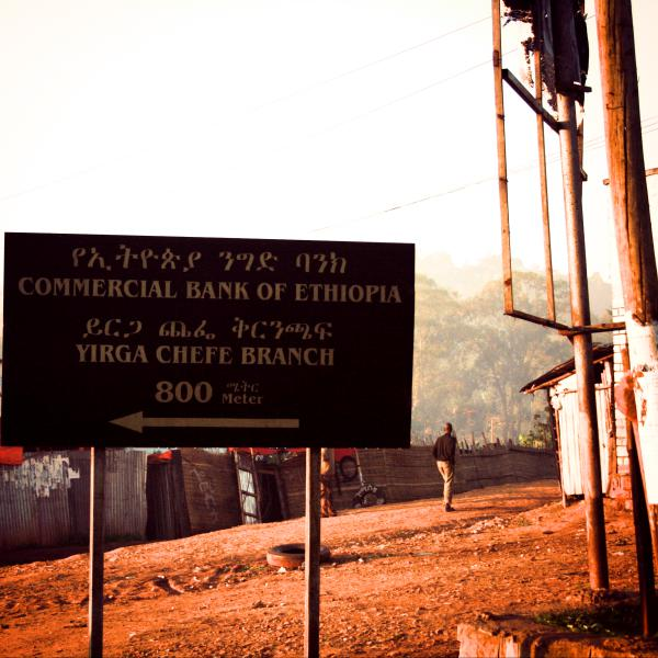 ETHIOPIA-Yirgacheffe Idido/エチオピア イルガチェフェ イディド(ナチュラル)