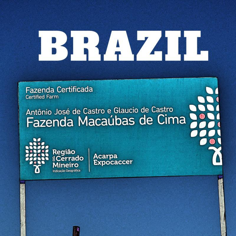 BRAZIL-Macaubas de Cima/ブラジル マカウバデシーマ農園(ウォッシュト)