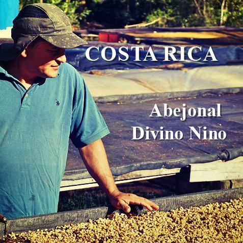 COSTA RICA-Abejonal Divino Nino/ アベホナル ディビーノ・ニーニョ(ナチュラル)