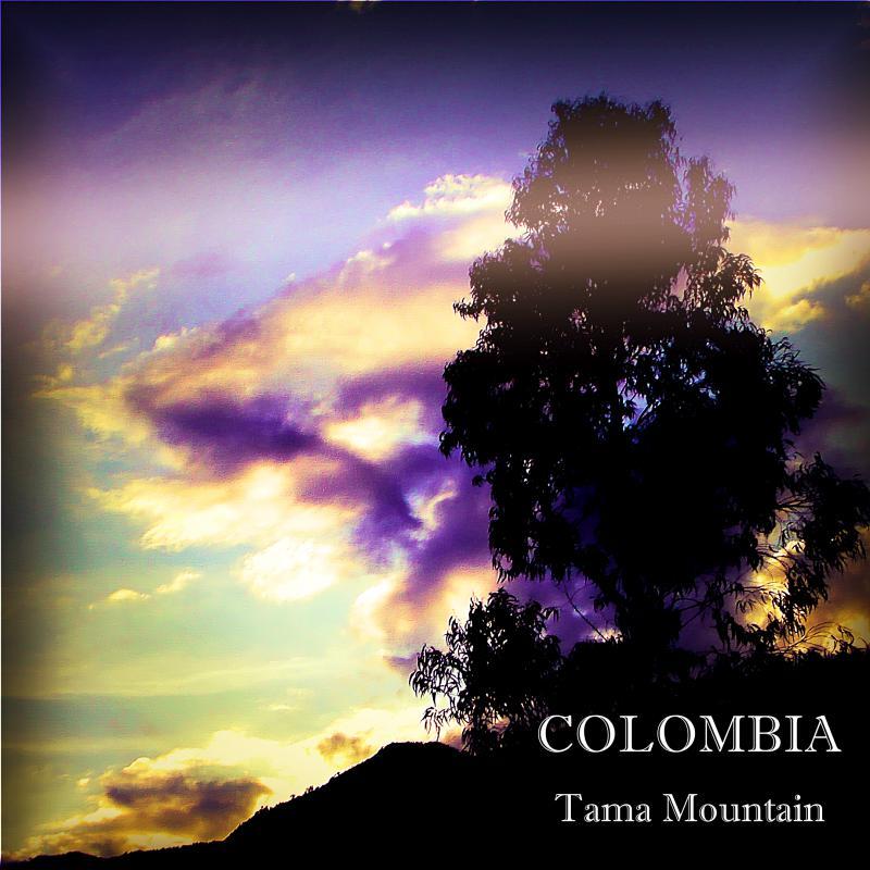 COLOMBIA-Tama Mountain/コロンビア タママウンテン