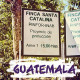 GUATEMALA-Santa Catalina/グアテマラ サンタカタリーナ農園(ピーベリー)