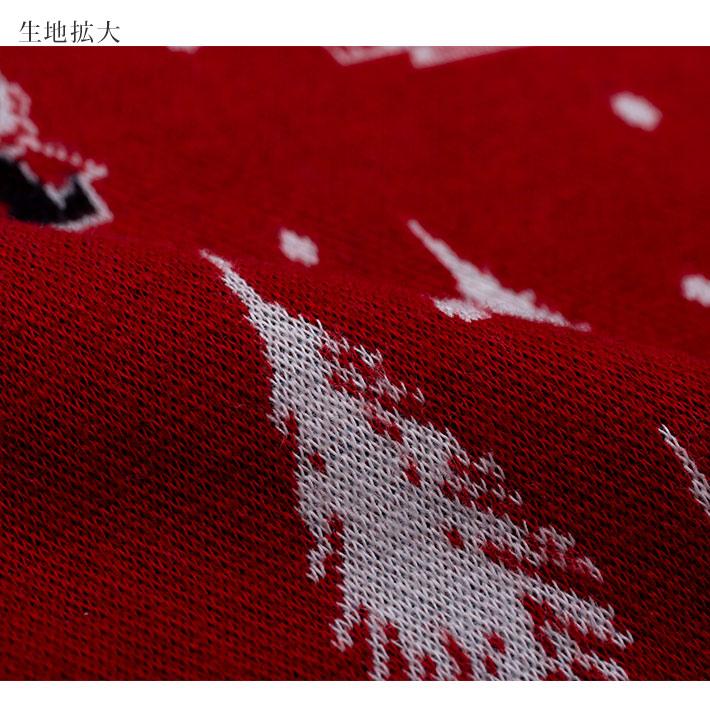 【Amour アムール】×【MOOMIN ムーミン】ダブルジャカード 起毛 × スムース無地 上下セット 【ムーミン谷の冬】