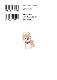 豆しば三兄弟 公式ピクチャーブック/MAMESHIBA SANKYOUDAI Official picture book:571682