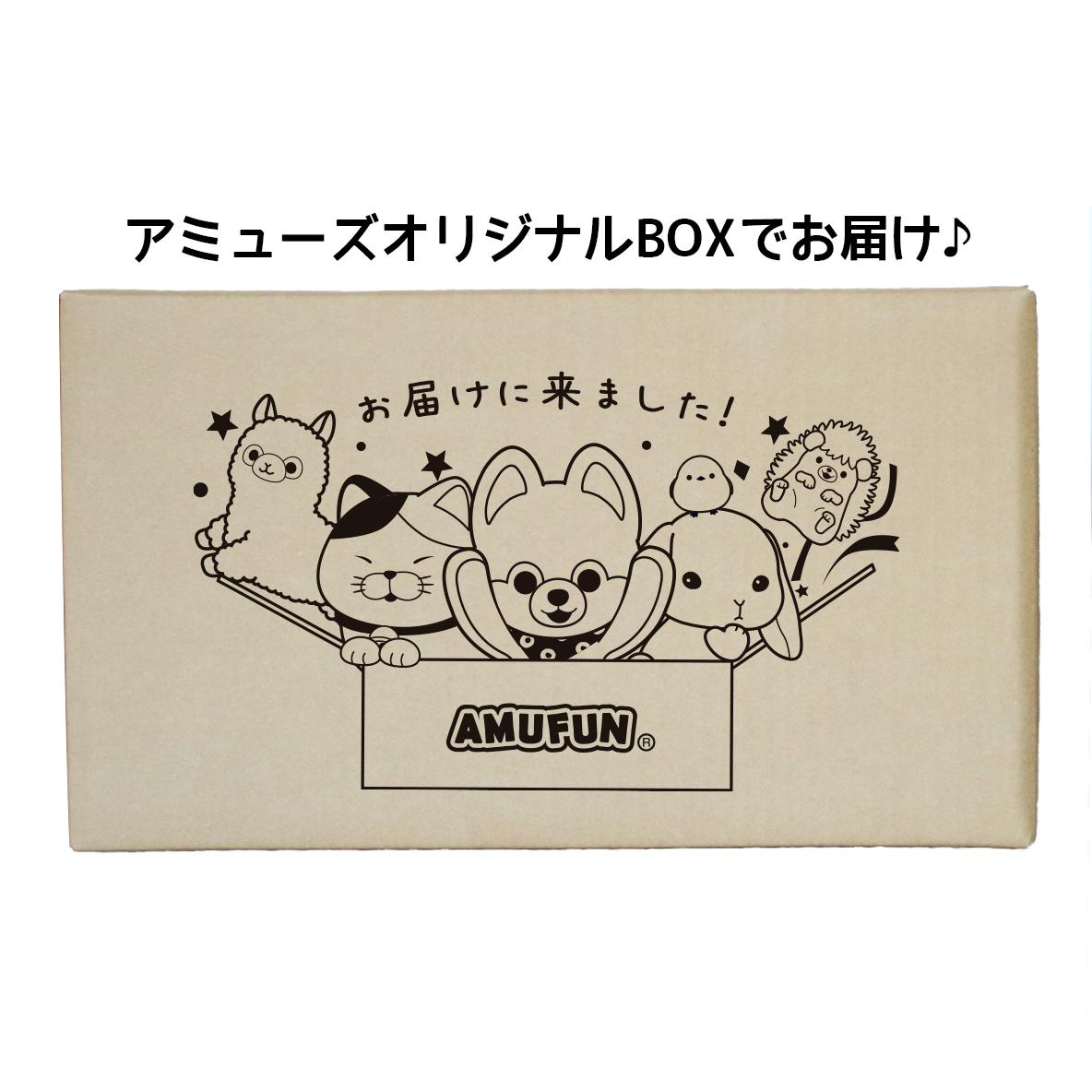 【数量限定】スペシャルアミュ箱(大)