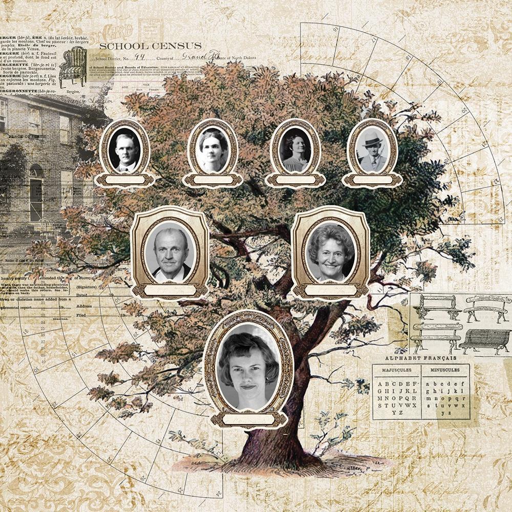 Simple Stories Simple Vintage Ancestry Die-Cuts - SVA14123 Frame