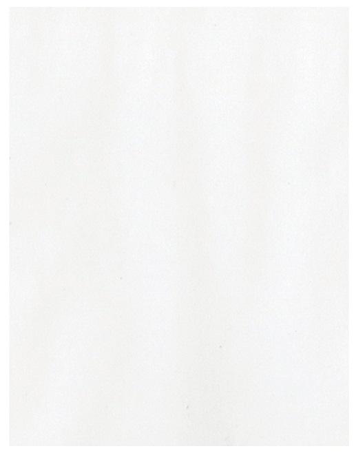 Bazzill Basics Vellum - White 40lb  8.5x11 (300616)
