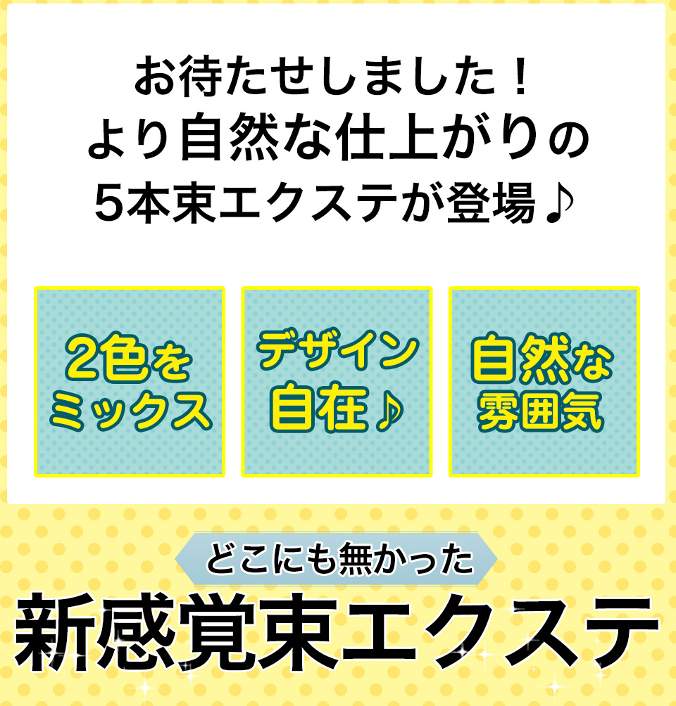 マイラッシュ my Lash 5本束 【メール便可】