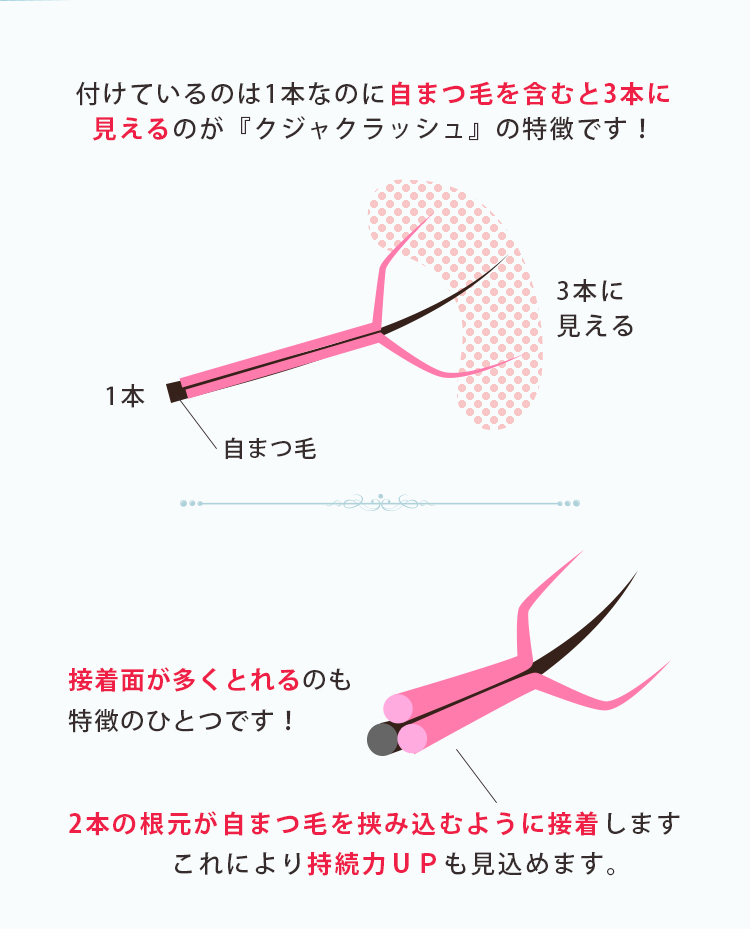 クジャクボリュームラッシュ 12列 Cカール 0.05mm 【メール便可】