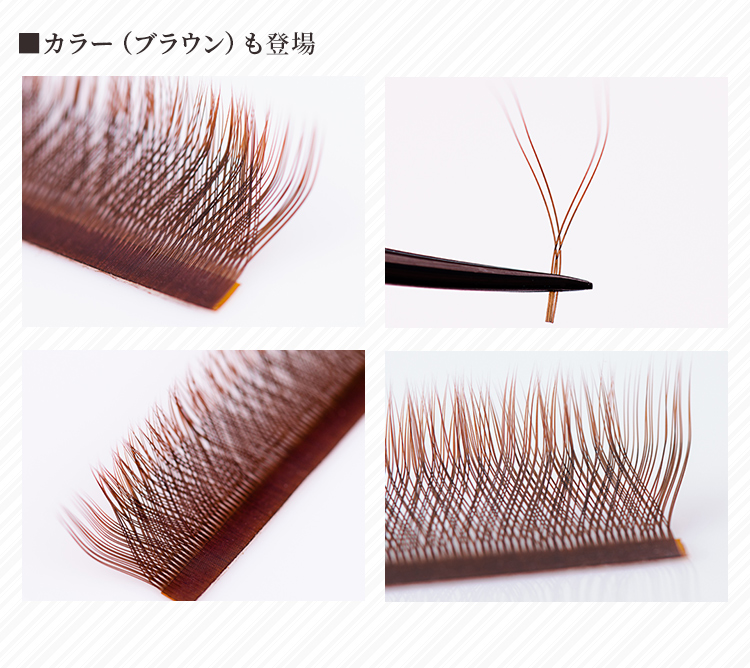 クジャクボリュームラッシュ 12列 Cカール 0.07mm 黒 ブラウン 【メール便可】