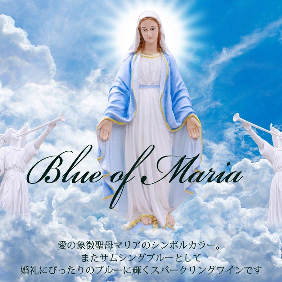 名入れ ブルー・オブ・マリア ボトルネックレスリボン3点セット