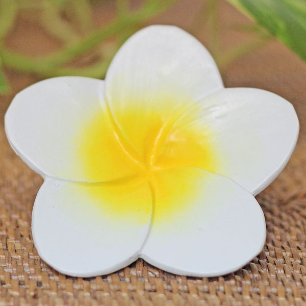 木彫りの造花 プルメリア特大 白