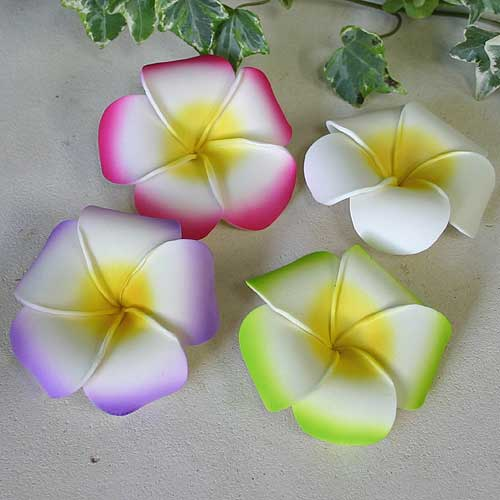 プルメリアの花びらLLA