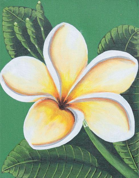 プルメリアの花の絵画14