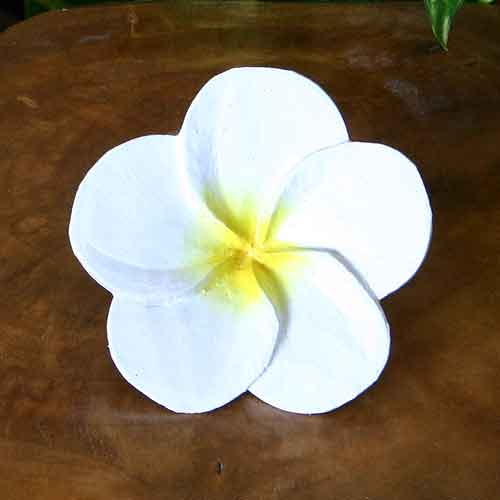 バリ島の花木彫りのオブジェ【プルメリアの花*大*白】