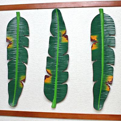壁掛けインテリア・ロングバナナリーフ