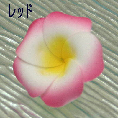 プルメリアの花びらM
