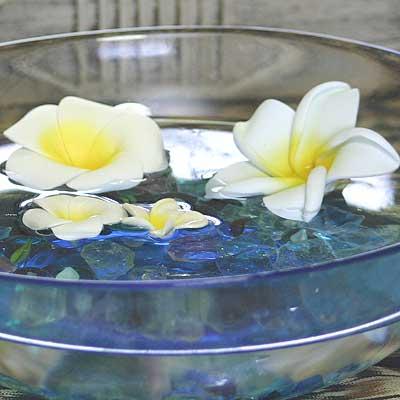 プルメリアの花びらL