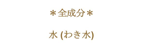シェイクバブルイーアクア 1000ml (お徳用ビッグボトル)