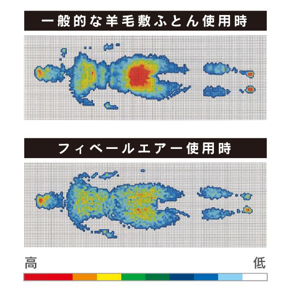 Danfill フィベールエアー ダブル 特殊構造体圧分散マットレス