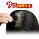セルフューチャー白髪かくしファンデーション 4g