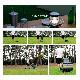 台車 FLAT CART 2×4(フラットカート ツーバイフォー) ブルー 耐荷重4輪時120kg、2輪時70kg 花岡車輌株式会社 釣り具 フィッシング アウトドア