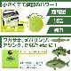 エアーポンプ プチAIR PUMP AP-04 6.9×6.3×2.0cm 単3電池2本別売 プチエアーポンプ タカ産業 釣り具
