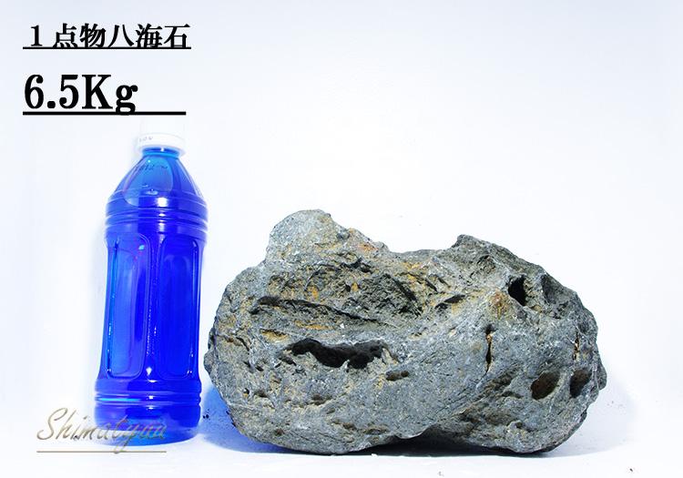 限定販売!! 一点物 八海石 6.5kg No.05