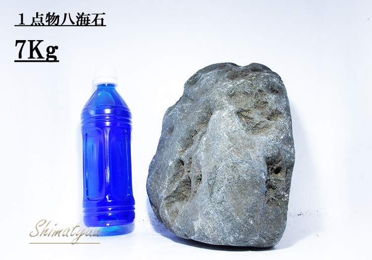 限定販売!! 一点物 八海石 7.0kg No.06