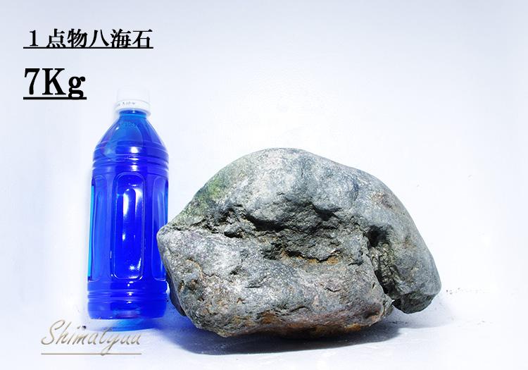 限定販売!! 一点物 八海石 7.0kg No.07