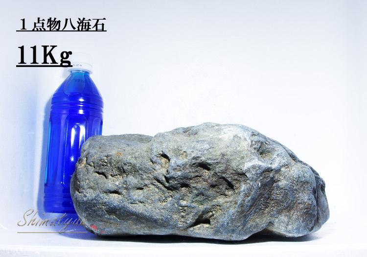 限定販売!! 一点物 八海石 11.0kg No.08