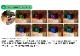 【照明器具】 ゼンスイ マルチカラーLED 300 調光リモコン付き