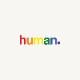 human - 12 face masks
