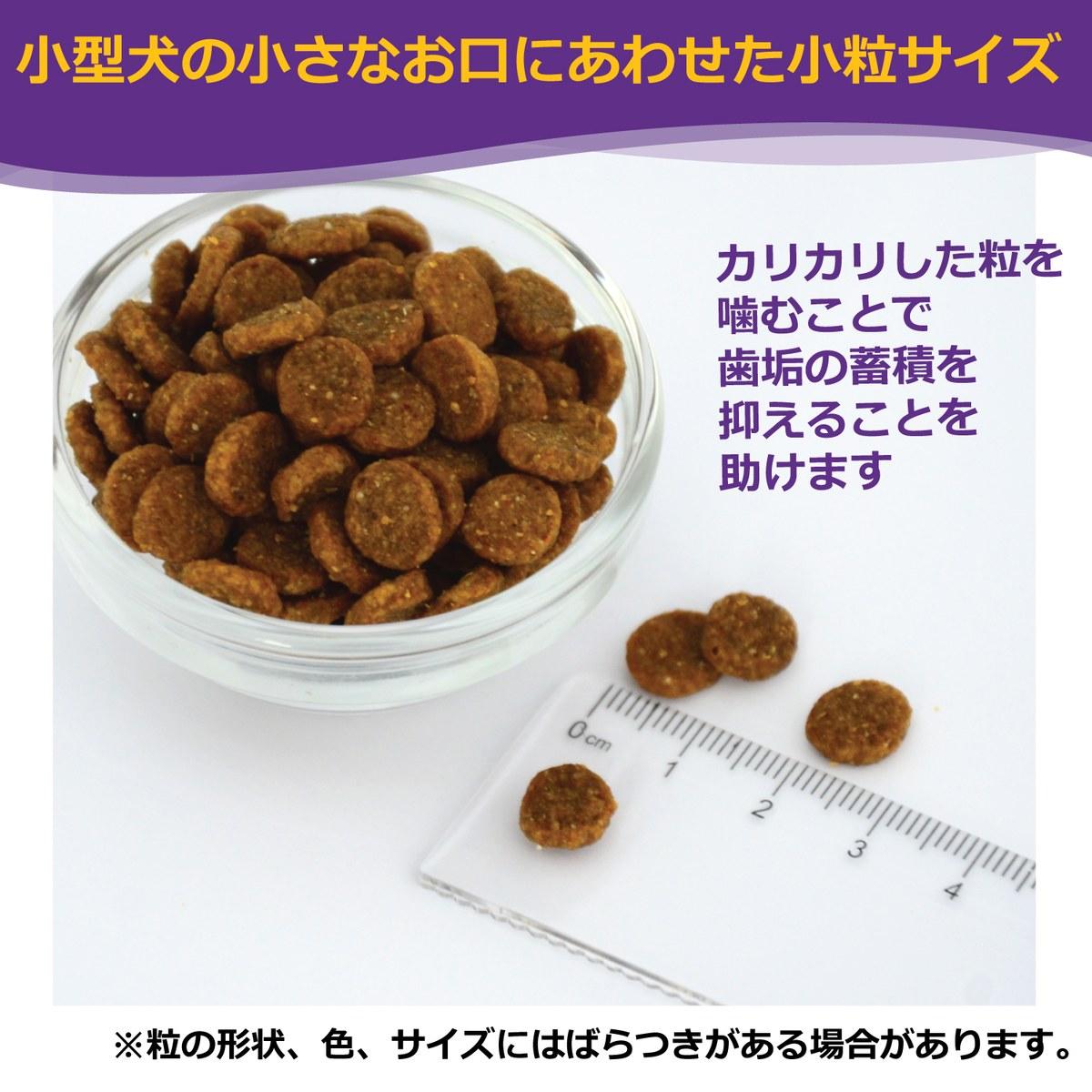 ウェルネス ドッグフード 小型犬子犬用 (離乳期〜1歳)1.8kg 当社専売品