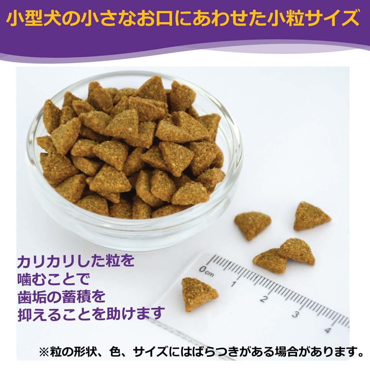 ウェルネス ドッグフード 小型犬高齢犬用(7歳以上)1.8kg 当社専売品