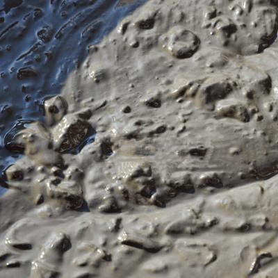 ボタニクス 死海の泥ソープ(70g)